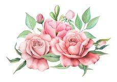 Conception d'invitation d'aquarelle avec le bouquet des fleurs, compositions florales peintes à la main d'isolement sur le fond b Photographie stock libre de droits