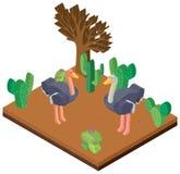 conception 3D pour deux autruches dans le désert Photographie stock