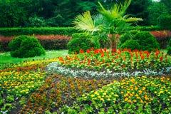 Conception de aménagement de jardin Lit de fleur, arbres verts Image stock