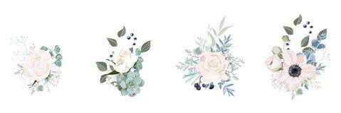 Conception de bouquet floral de vecteur : fleur crémeuse de Rose de poudre de rose de jardin illustration stock