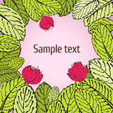 Conception de carte de fleur de Sprimg illustration stock