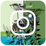 Conception de fleur d'instagram de logo de vecteur Icône stylisée d'un bouton mise en réseau sociale de signe plat d'instagram photographie stock