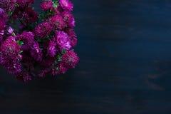Conception de fleur de Dahlia Autumn sur le fond en bois Photos stock