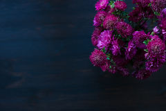 Conception de fleur de Dahlia Autumn sur le fond en bois Photographie stock libre de droits