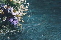 Conception de fleurs d'été Photographie stock libre de droits