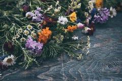 Conception de fleurs d'été Photo stock