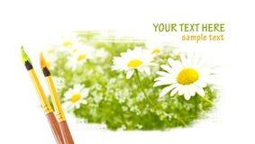 Conception de fleurs de marguerite illustration stock