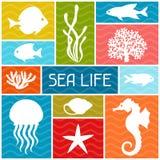 Conception de fond d'espèce marine avec des animaux de mer illustration libre de droits