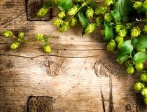 Conception de frontière d'usine d'houblon Brindilles des houblon au-dessus de la table criquée en bois Photos stock