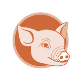 Conception de graphisme de porc Photo stock