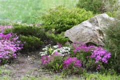 Conception de jardin avec des roches et des fleurs (3) Image libre de droits