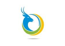 Conception de logo de cerfs communs Photos stock