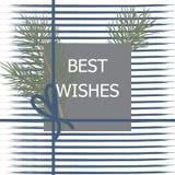 Conception de Noël et de nouvelle année avec de belles branches d'usine, PAP photo stock
