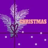 Conception de Noël et de nouvelle année avec de belles branches d'usine, PAP photographie stock libre de droits