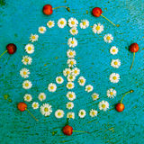 Conception de paix de symbole de paix de signe de paix sur le fond bleu Photos stock