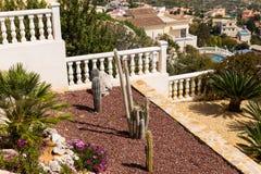 Conception de paysage avec des palmiers et des cactus Vue supérieure de la conception moderne de jardin avec une terrasse Image libre de droits