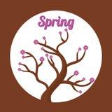 Conception de printemps Photo libre de droits