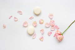 Conception de ressort avec les macarons et la fleur dans la vue supérieure de lumière molle Photo stock