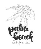 Conception de T-shirt de la Californie de Palm Beach Photographie stock