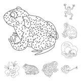 Conception de vecteur d'ic?ne amphibie et animale Placez de l'ic?ne de vecteur d'amphibie et de nature pour des actions illustration de vecteur
