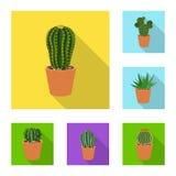 Conception de vecteur d'icône de cactus et de pot L'ensemble de cactus et les cactus stockent l'illustration de vecteur illustration de vecteur