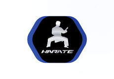 Conception de vecteur de logo de karaté Photo libre de droits