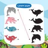 Conception de vecteur de jeu d'assortiment de dauphin illustration de vecteur