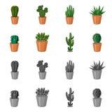 Conception de vecteur de signe de cactus et de pot La collection du cactus et les cactus dirigent l'icône pour des actions illustration stock