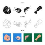 Conception de vecteur de signe d'apéritif et d'océan Collection de symbole boursier d'apéritif et de délicatesse pour le Web illustration stock