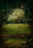 Conception de Veille de la toussaint - tombe de forêt Photos stock