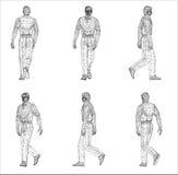 Conception de Wireframe de l'homme Photographie stock libre de droits