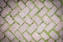 Conception en pierre de trottoir de texture de plancher d'herbe Photos stock