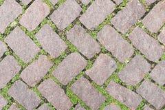 Conception en pierre de trottoir de texture de plancher d'herbe Images libres de droits