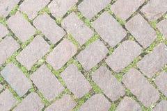 Conception en pierre de trottoir de texture de plancher d'herbe Photographie stock libre de droits