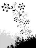 Conception florale Image libre de droits