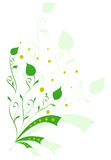 Conception florale Image stock