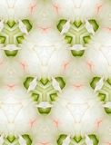 Conception florale abstraite pour le fond Photo libre de droits