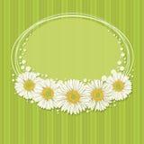 Conception florale d'invitation Images stock