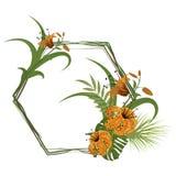 Conception florale de feuille d'été de cadre tropical aloha Photo stock