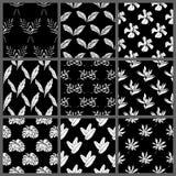 Conception florale de papier peint de fond de modèle de vecteur de feuilles tropicales sans couture noires et blanches illustration stock