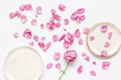 Conception florale de ressort avec des pétales de rose dans la maquette de vue supérieure de lumière molle Image stock