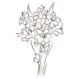 Conception florale de vecteur Images stock