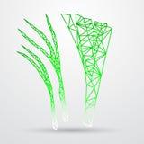 Conception géométrique polygonale abstraite de triangle Ligne illustration de Colorfuul de vecteur Image stock
