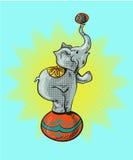 Conception graphique d'illustration de vecteur d'icône de bande dessinée d'éléphant de cirque Image libre de droits
