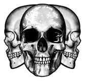 Conception graphique de crânes illustration libre de droits