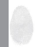 Conception graphique de disposition Images libres de droits