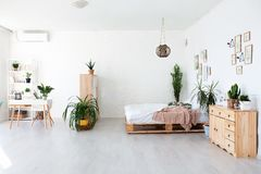 Conception intérieure confortable de studio moderne dans le style scandinave Une salle énorme spacieuse en couleurs les couleurs  photos libres de droits