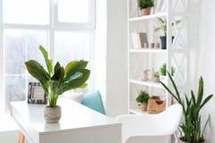 Conception intérieure confortable de studio moderne dans le style scandinave Une salle énorme spacieuse en couleurs les couleurs  photographie stock