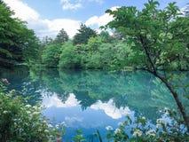 Conception japonaise de paysage Photo libre de droits