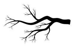 Conception nue d'hiver de branche d'isolement sur le fond blanc illustration stock